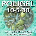 ABONO LIQUIDO LTA 10-5-30 (10 Litros)