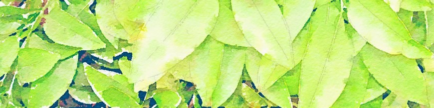 Foliar